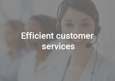 Efficient Customer Services